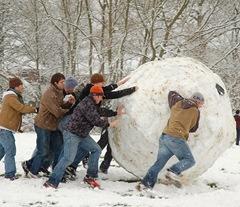 Snowball attr Kamyar Adl crop