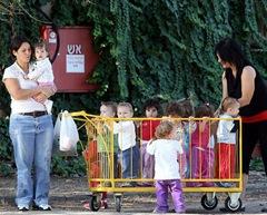 Toddler Cart Crop - Remi  Jouan