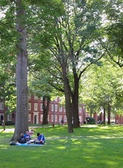 Harvard Yard Crop