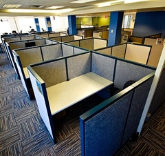 Cubicles crop Asa Wilson