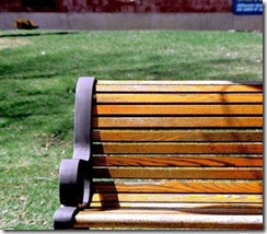 Park Bench Crop
