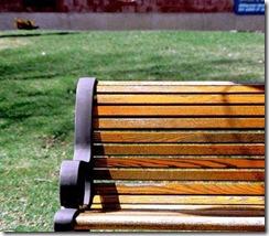 Park Bench Crop